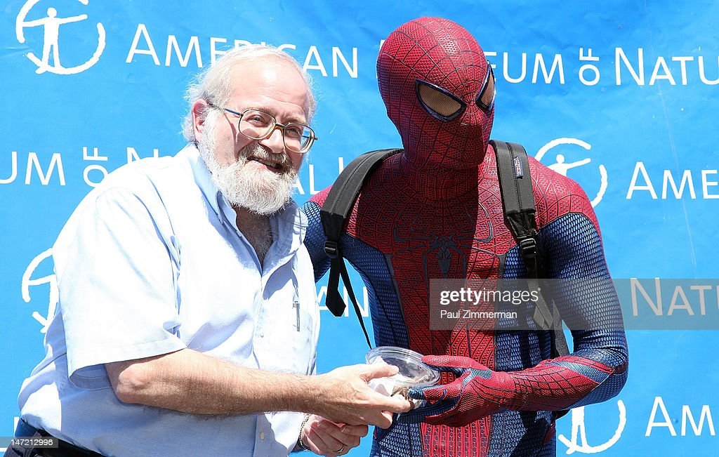 Spiderman (R) delivers a Chilean Rose Tarantula to Curator, AMNH, Division of Invertebrate Zoology, Norman Platnick (L) at the American Museum of Natural History on June 27, 2012 in New York City.