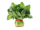 Spinach bunch isolated on white background