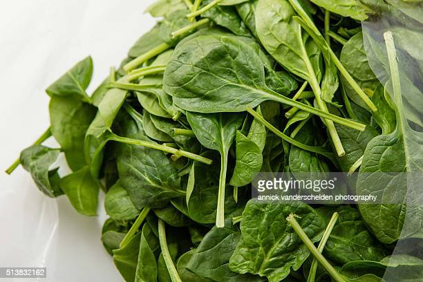 Spinach in plastic bag.