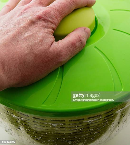Spinach in salad spinner.