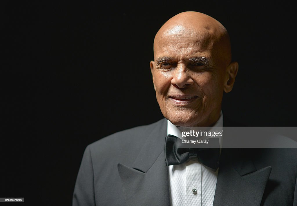 Spingarn Medal honoree <a gi-track='captionPersonalityLinkClicked' href=/galleries/search?phrase=Harry+Belafonte&family=editorial&specificpeople=204214 ng-click='$event.stopPropagation()'>Harry Belafonte</a> poses for a portrait during the 44th NAACP Image Awards at The Shrine Auditorium on February 1, 2013 in Los Angeles, California.