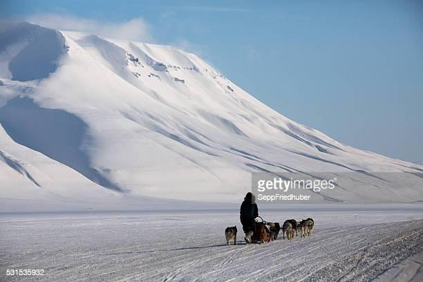 Spitzbergen sledge dogs excursion