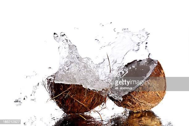 Spritzendes Wasser Kokosnuss