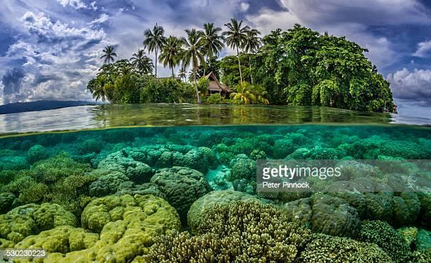 Split image shot of Pacific Ocean tropical island