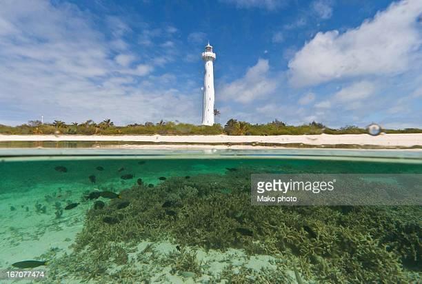 Split shot coral island