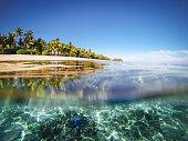 Split shot of tropical island. Over underwater