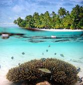 Split shot of tropical paradise