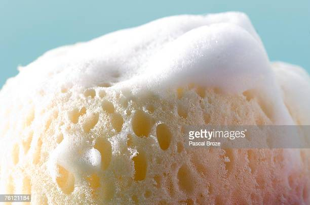 Sponge covered with soap lather, close-up