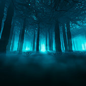 3D illustration of dark misty forest