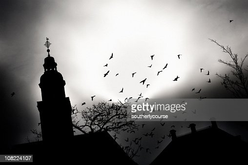 Spooky Silhouette of Church and Birds Flying : Stock Photo