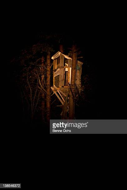 Spooky tree house