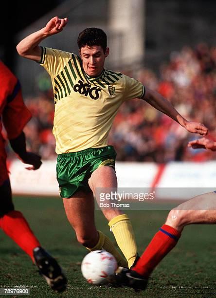 Sport Football March Chris Sutton of Norwich City