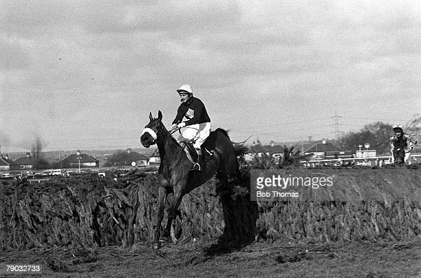 Sport Horse Racing The Grand National Aintree Liverpool England 2nd April 1977 The horse Red Rum ridden by jockey Tommy Stack jumps the last fence to...