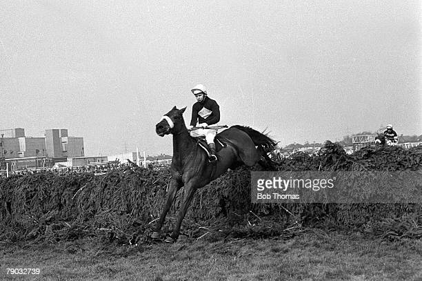 Sport Horse Racing The Grand National Aintree Liverpool England 30th March 1974 The eventual winner of the race Red Rum ridden by jockey Brian...