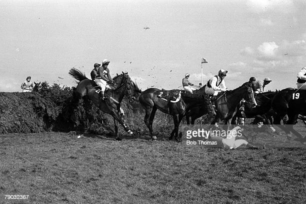 Sport Horse Racing The Grand National Aintree Liverpool England 31st March 1984 Jockey Graham Bradley lies on the ground after falling from his horse...