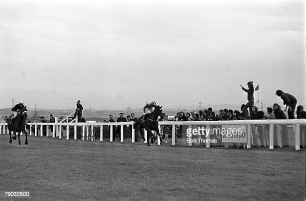 Sport Horse Racing The Grand National Aintree Liverpool England 31st March 1973 The horse Crisp ridden by jockey Richard Pitman is beaten on the line...