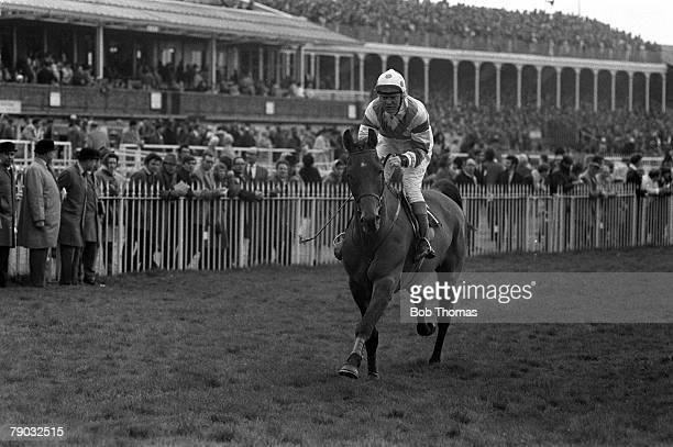 Sport Horse Racing The Grand National Aintree Liverpool England 3rd April 1971 The horse Gay Trip ridden by jockey Terry Biddlecombe
