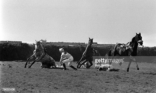 Sport Horse Racing The Grand National Aintree Liverpool England 9th April 1983 A number of jockeys lie on the floor after falling from their horses...