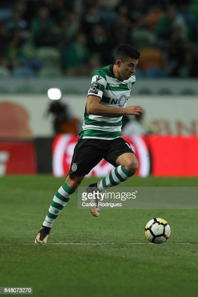Sporting CP midfielder Rodrigo Battaglia from Argentina during the Portuguese Primeira Liga round 6 match between Sporting CP and CD Tondela at...