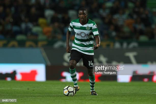 Sporting CP midfielder William Carvalho from Portugal during the Portuguese Primeira Liga round 6 match between Sporting CP and CD Tondela at Estadio...