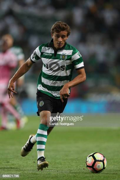 Sporting CP's midfielder Francisco Geraldes from Portugal during the Sporting CP v GD Chaves Portuguese Primeira Liga match at Estadio Jose Alvalade...