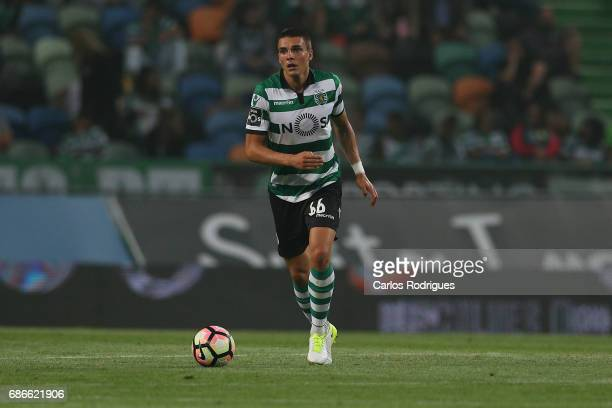 Sporting CP's midfielder Joao Palhinha from Portugal during the Sporting CP v GD Chaves Portuguese Primeira Liga match at Estadio Jose Alvalade on...