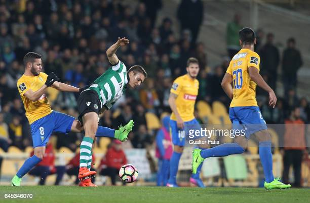 Sporting CP's midfielder Joao Palhinha from Portugal with Estoril's midfielder Eduardo Teixeira from Brazil in action during the Primeira Liga match...
