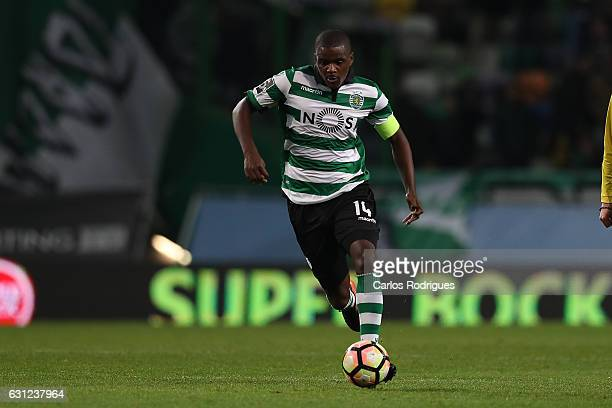 Sporting CP's midfielder William Carvalho from Portugal during the Sporting CP v CD Feirense Portuguese Primeira Liga match at Estadio Jose Alvalade...