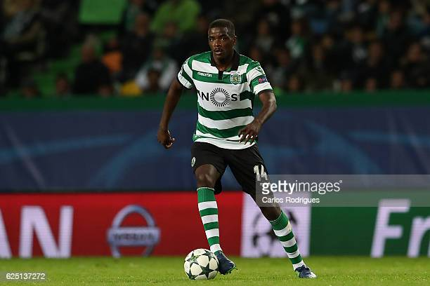 Sporting CP's midfielder William Carvalho from Portugal during the Sporting Clube de Portugal v Real Madrid CF UEFA Champions League round five match...