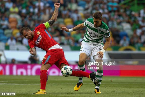 Sporting's defender Sebastian Coates vies with Steaua Bucuresti forward Denis Alibec during the UEFA Champions League football match between Sporting...