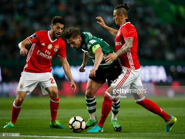 Sporting's midfielder Adrien Silva vies for the ball with Benfica's forward Pizzi and Benfica's midfielder Ljubomir Fejsa during Premier League...