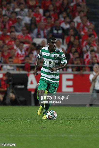 Sporting's midfielder William Carvalho during the Primeira Liga match between SL Benfica and Sporting CP at Estadio da Luz on August 31 2014 in...