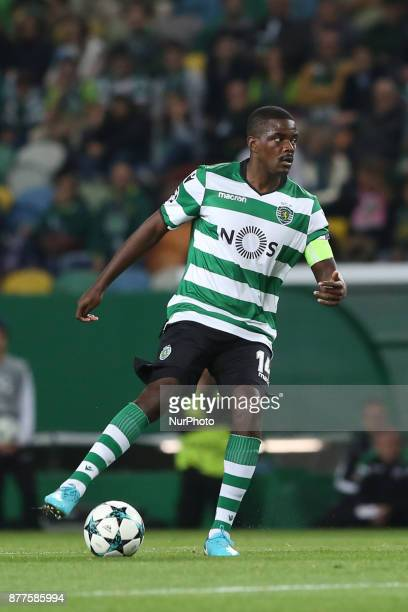 Sporting's midfielder William Carvalho from Portugal in action during the UEFA Champions League group D football match Sporting CP vs Olympiacos FC...