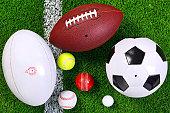 스포츠 볼 수 있는 잔디 위에서.