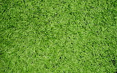 American Football - Ball, Soccer Ball, Carpet - Decor, Flooring, Textile