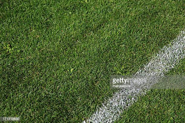 Sports field white lines