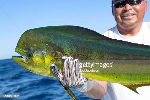 Sports,Dorado, successful day of fishing