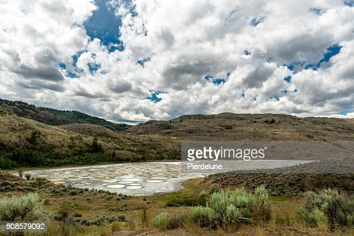 Spotted Lake in Okanagan valley : Stockfoto