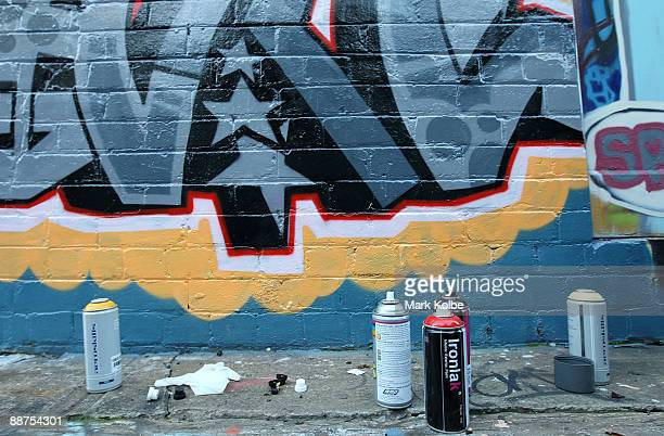 Spray paint cans are seen in front of a graffiti artwork on June 30 2009 in Sydney Australia The Australian Government has vowed to crack down on...