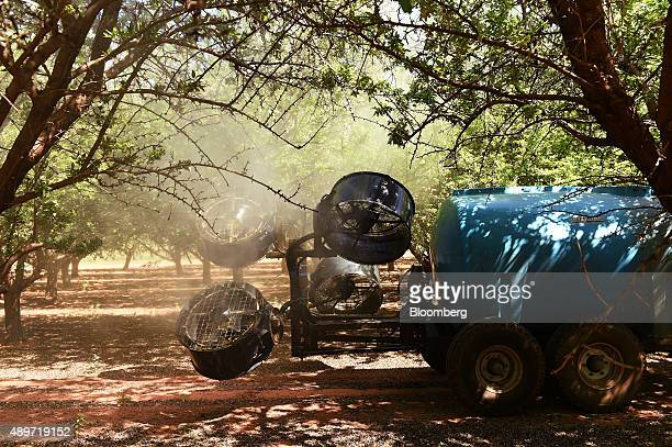 A sprayer disperses oilbased liquid over almond trees to repel insects at a Select Harvest Ltd farm near Wemen Australia on Wednesday Sept 23 2015...