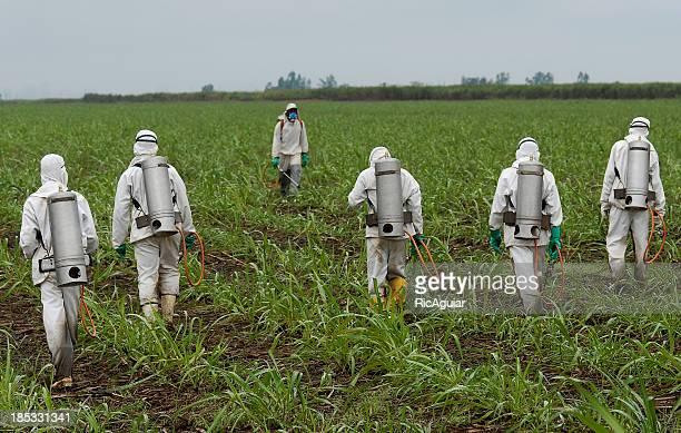Pulverizar herbicida