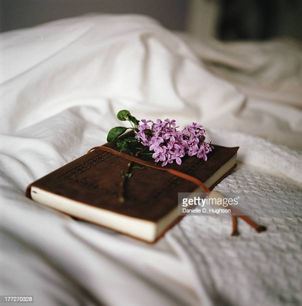 Sprig of lilac and book on bed