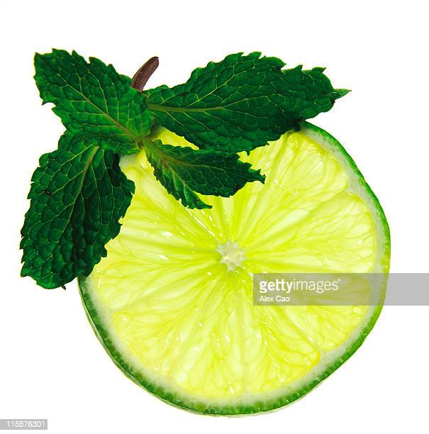 Sprig of Mint with a slice of lime