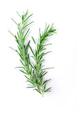 """""""Fresh bunch of rosemary with selective focus. Rosemary, part of the mint family, is a strong scented resinous herb used in cooking."""""""