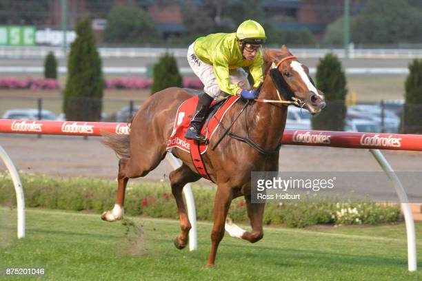 Sprightly Lass ridden by James Winks wins the Excellence in Baking 2018 Handicap at Moonee Valley Racecourse on November 17 2017 in Moonee Ponds...