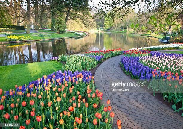 Sprigtime Keukenhof Gardens Tulips and Hyacinths