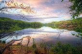 Spring at Radnor lake