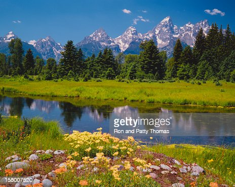Resorte del Tetons (P