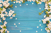 Frame of white blossom on old blue wooden desk with copy space