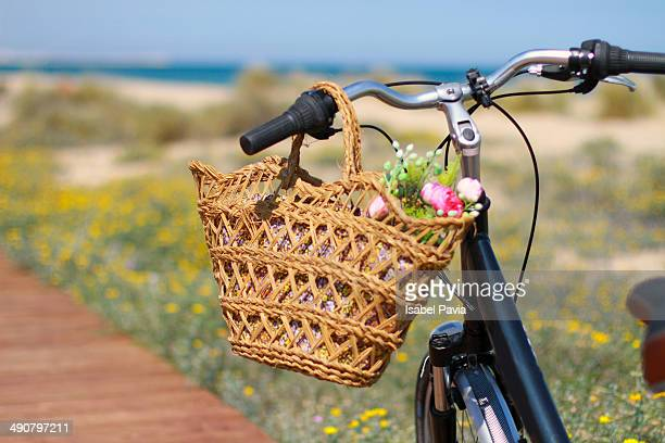 Spring bicycle